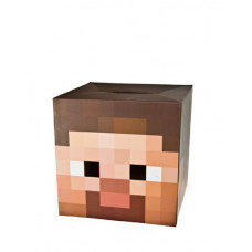 MINECRAFT STEVE HEAD